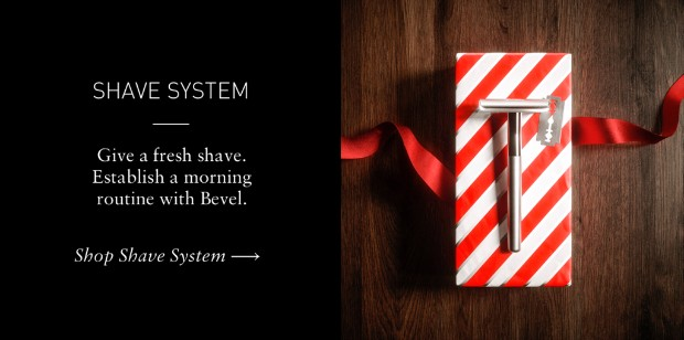 SHAVE SYSTEM