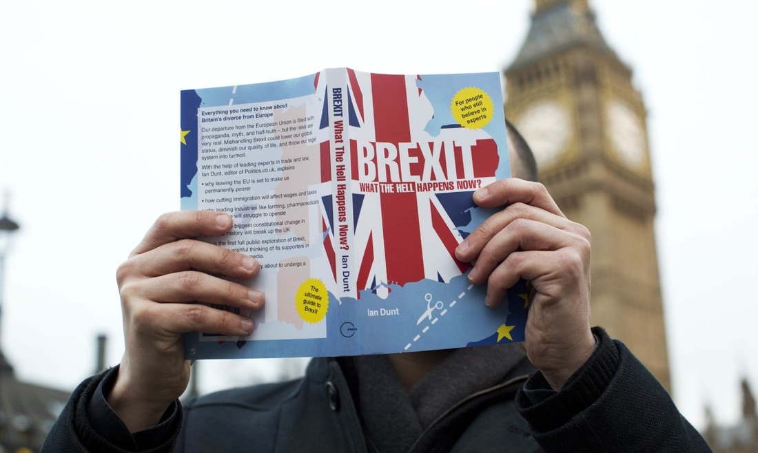 Brexit: what the hell happens now? by Ian Dunt