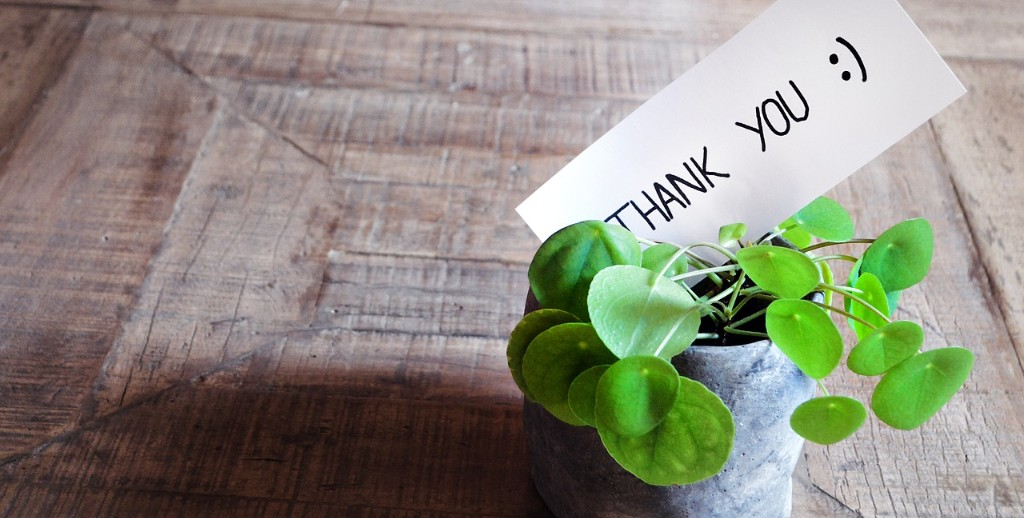 A thank you note in a plant