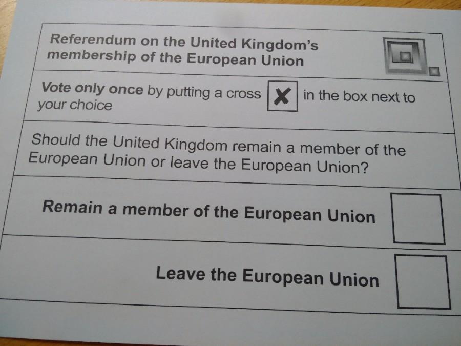European referendum ballot paper