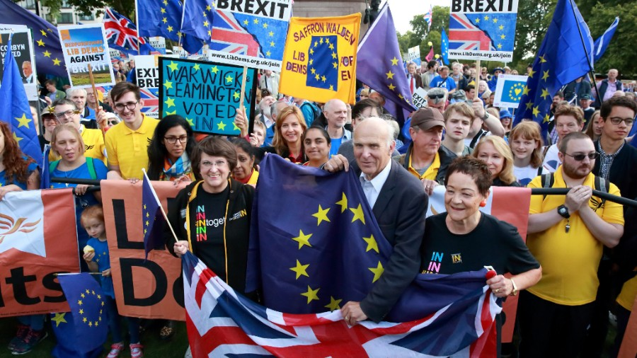 Liberal Democrats at a pro-Europe march - photo courtesy of the Lib Dems