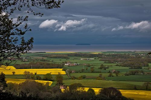 Qantock Hills, Somerset