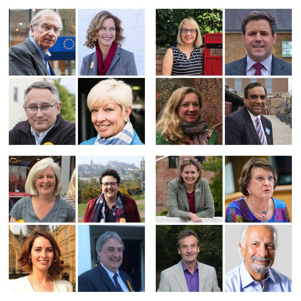 Photos of the 16 Lib Dem MEPs. Image via Jo Swinson on Twitter