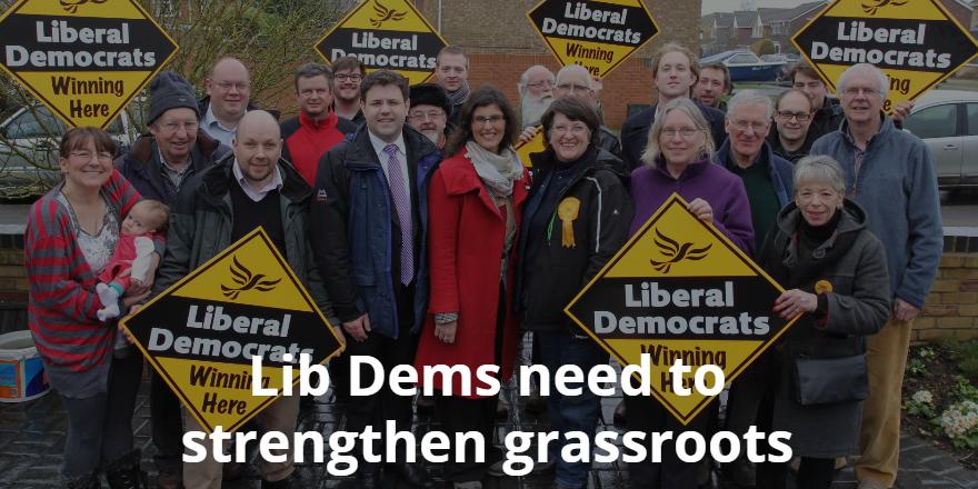 Lib Dem grassroots campaigning