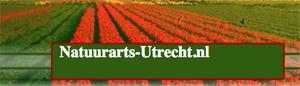 website dr Van Prooijen