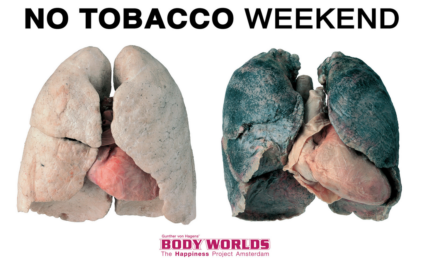 No tobacco weekend