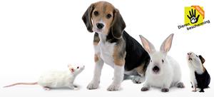 Petitie dierenbescherming