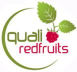 logo quali redfruits