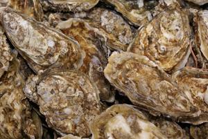 oesterschelpen