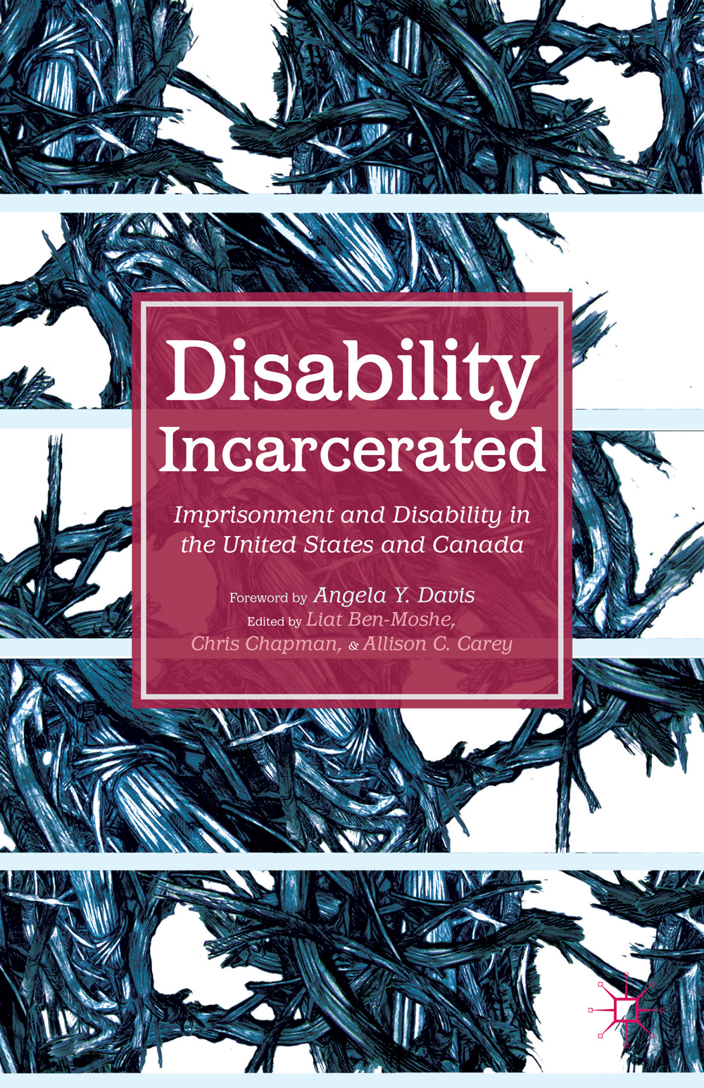 Book Cover of Disability Incarcerated