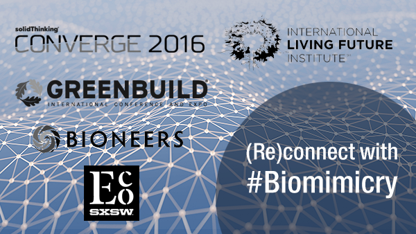 Join us: Finish 2016 with a dose of biomimicry