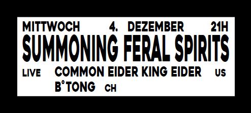 Mittwoch, 4. Dezember 21:00 Uhr: SUMMONING FERAL SPIRITS w/ Common Eider, King Eider (US) & B°Tong (CH)