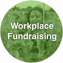 Workplace Fundraising