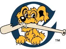 Riverdogs logo