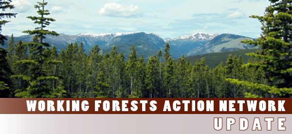 Working Forests Action Network