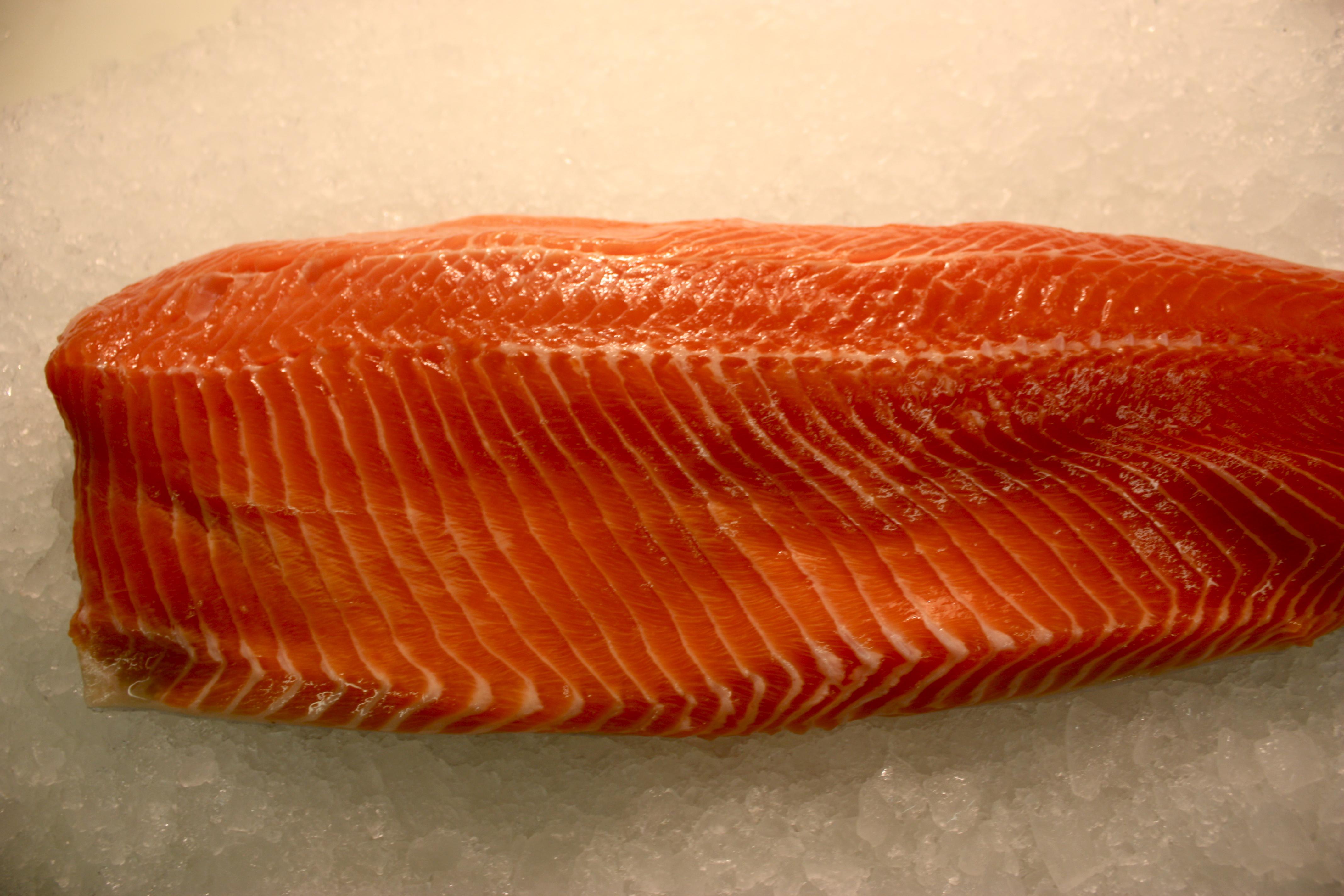 Steelhead trout fillet