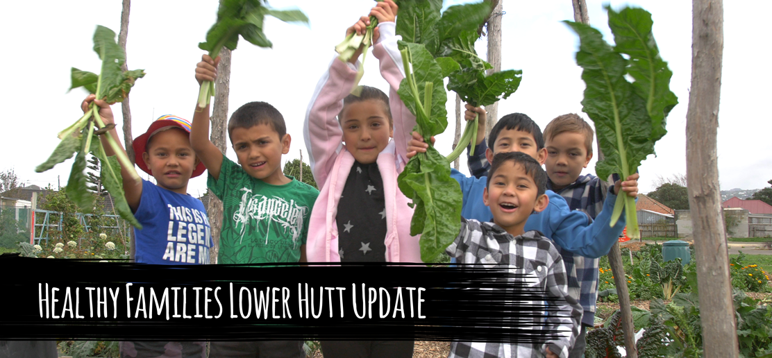 Healthy Families Lower Hutt Update
