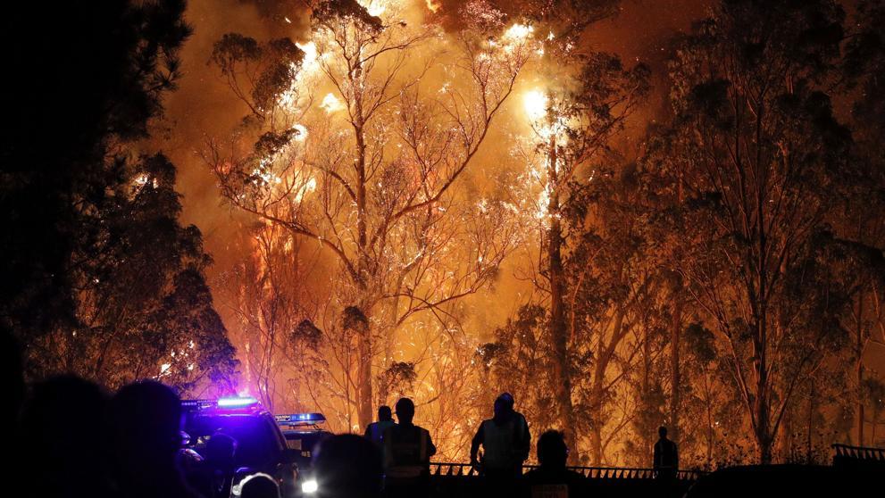 Blanco reclama a la Comisión medidas y ayudas para paliar los daños causados por los incendios