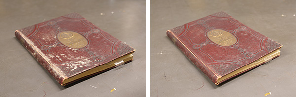 Side by side photos of book before and after cleaning with HEPA vacuum