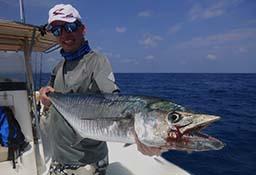 Spanish Mackerel Andamans