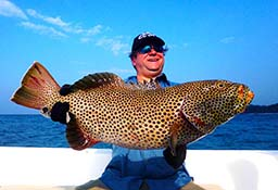 Coral Trout Andaman