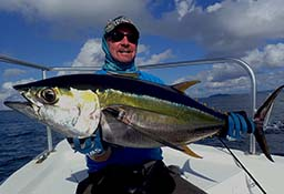 Yellowfin Tuna Andaman