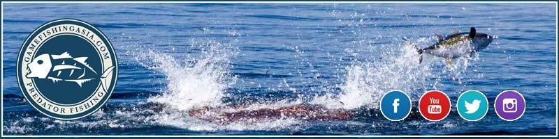 Gamfishing Asia Website & Social