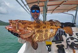 Riaz Grouper Andaman