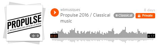 Soundcloud ProPulse Festival