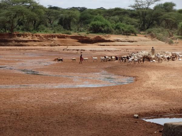 Tana Basin, Kenya