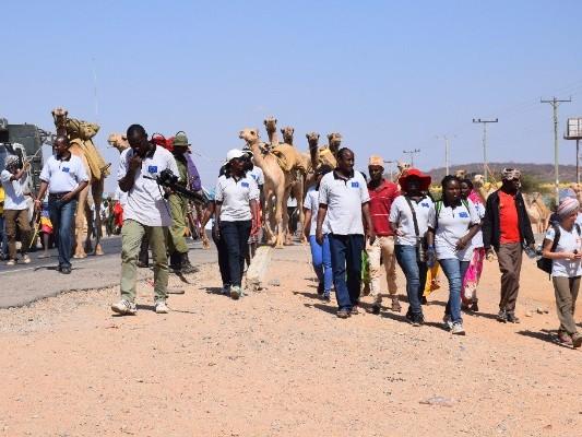 Camel Caravan, Isiolo