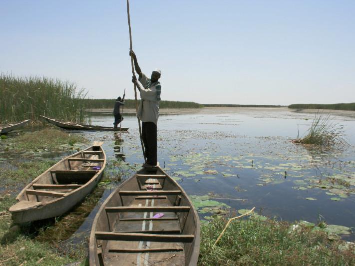 People fishing in the Hadejia-Nguru wetlands