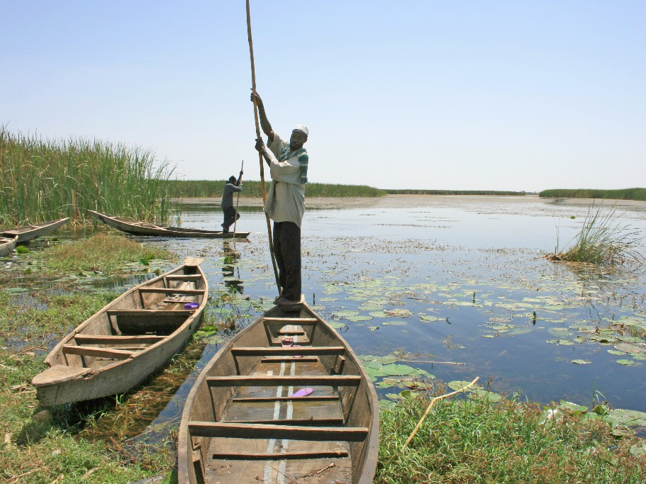 People fishing in the Hadejia-Nguru wetlands