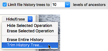 Limit File History Trees