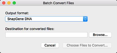 Batch Convert Files