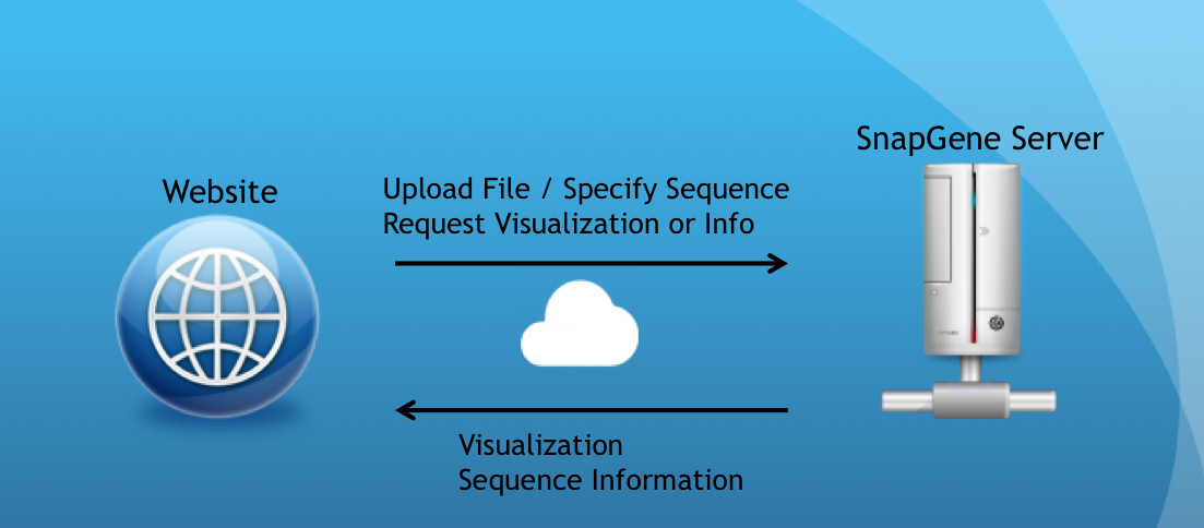 Import from the SnapGene online plasmid resource