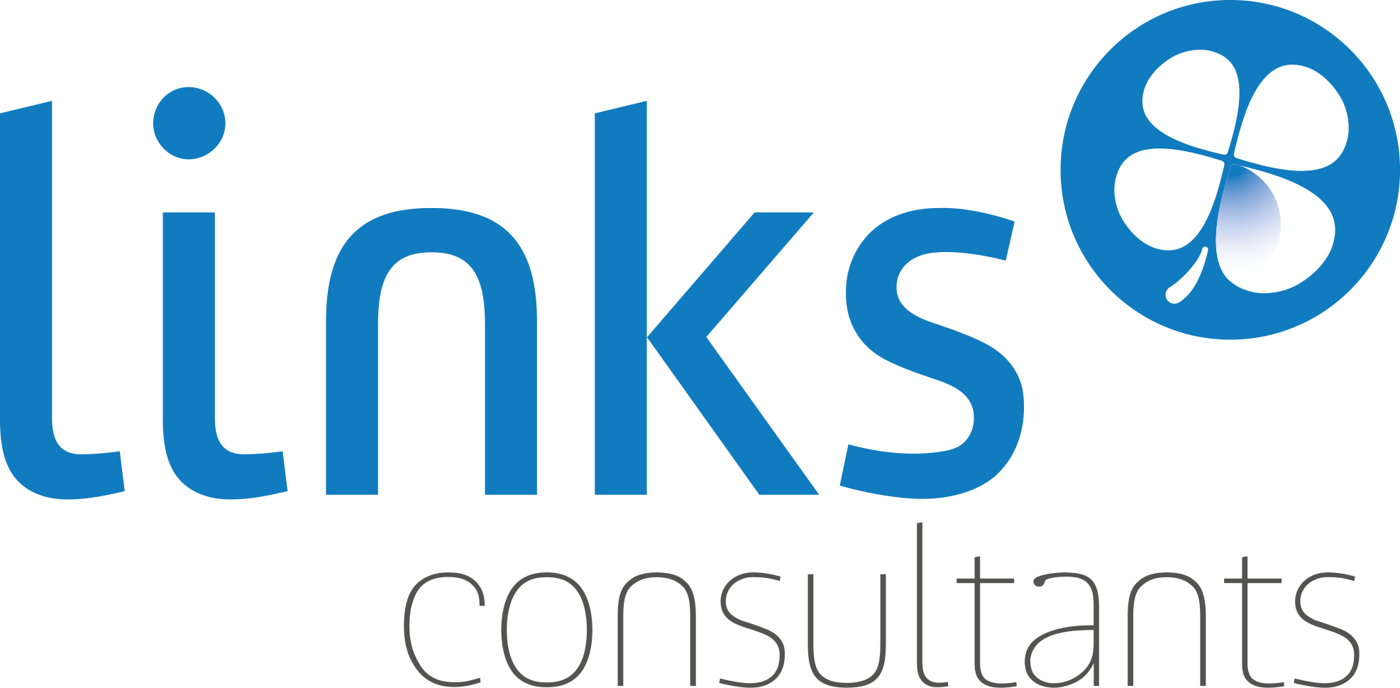 Links-Consultants-Portage-Salarial