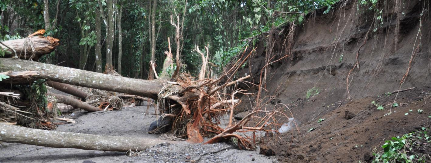 Caribbean Storm Causes Damages this Christmas