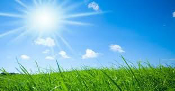 Photo of the sun shining over a grassy field