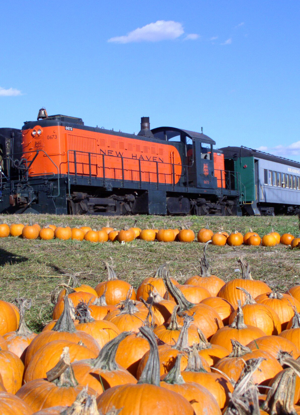 Danbury Railway Museum's Pumpkin Patch Train Weekends Oct 13 - 28