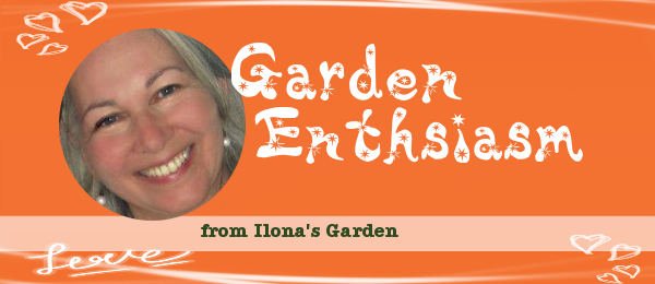 Garden Enthusiasm Newsletter
