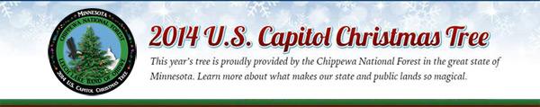 2014 U.S. Capitol Christmas Tree