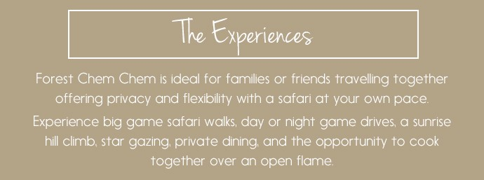 The Experiences: ideal for families or friends - experience a private safari in Tanzania
