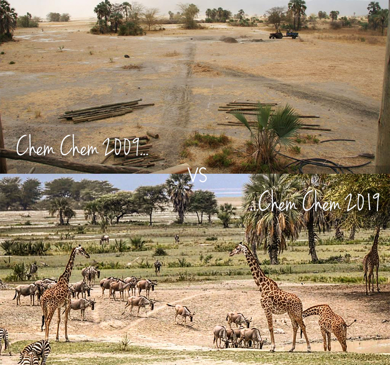 Download images to see the incredible impact your conservation & community fees have made over the years...