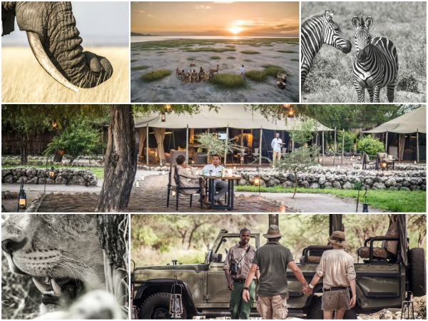 Not just safari, a lifestyle...