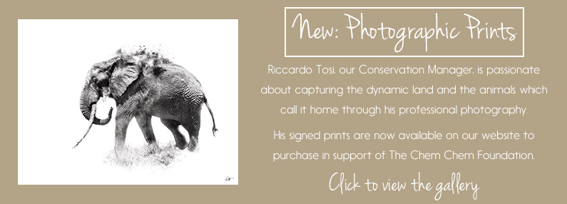 Riccardo Tosi limited edition photographic prints for purchase