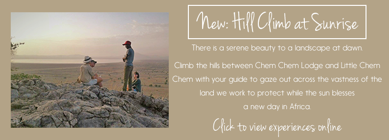NEW ACTIVITY: Hill Climb from Little Chem Chem or Chem Chem Lodge
