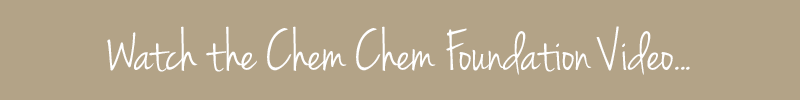Watch, listen, learn with the Chem Chem Foundation