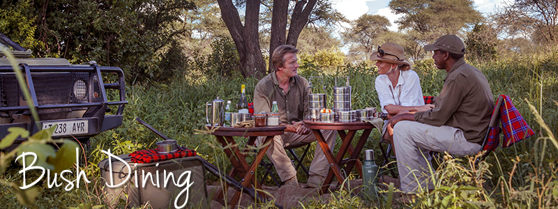 Bush Dining ... Beneath baobab trees or in pockets of acacia for breakfast, lunch and dinner.