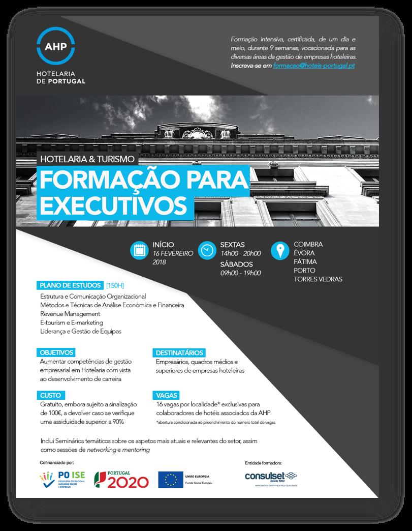 Formação para Executivos AHP